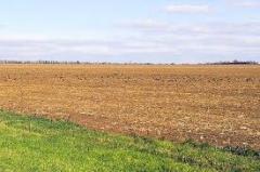 Купля-продажа земли