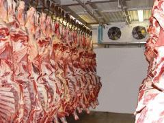 Холодильные камеры для мясо