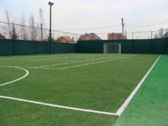 Аренда поля по мини футболу