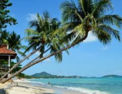 Самуи — остров романтики