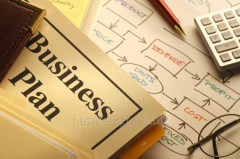 Development of business plans (trade, services,