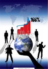 Проведение маркетинговых исследований