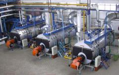 Лизинг оборудования для переработки пищевых