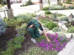 Садовдческие услуги
