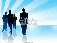 Оценка перспектив бизнеса