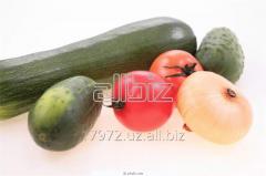 Хранение плодоовощной продукции в холодильниках