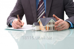 Услуги в сфере недвижимости