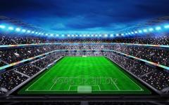 Строительство спортивных сооружений футбольные поля, теннисные корты, площадки для любого вида спорта и даже детские площадки.