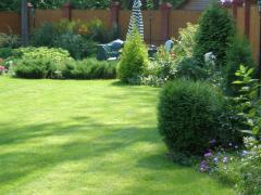 Озеленение и уход