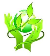 Разработка экологических нормативных документов