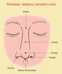 Пластическая хирургия груди, носа, век