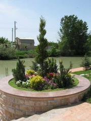 Посадка садовых растений