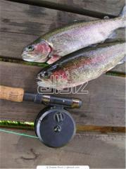 Туры на охоту и рыбную ловлю