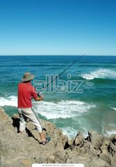 Туры на рыбалку и охоту