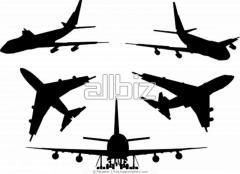 Organization of business tourism